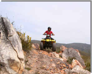 A mountain quad bike tour in the Langeberg
