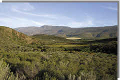 The Tradouw Valley - Route 62 in South Africa where Tradouw Quads offers guided quad bike tours